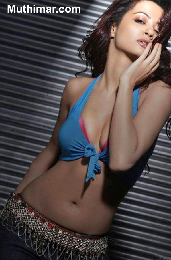 Surveen Chawla sexy images